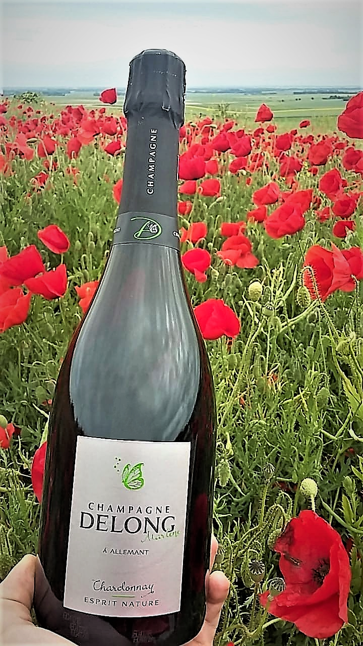 Esprit Nature Chardonnay